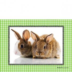 Brillenputztuch Rabbit Caro