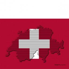 Brillenputztuch Swiss